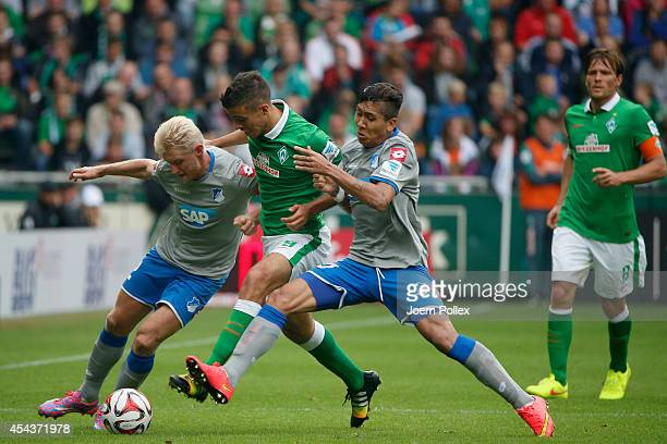 Franco Di Santo of Bremen and Andreas Beck and Firmino of Hoffenheim compete for the ball during the Bundesliga match between Werder Bremen and 1899...