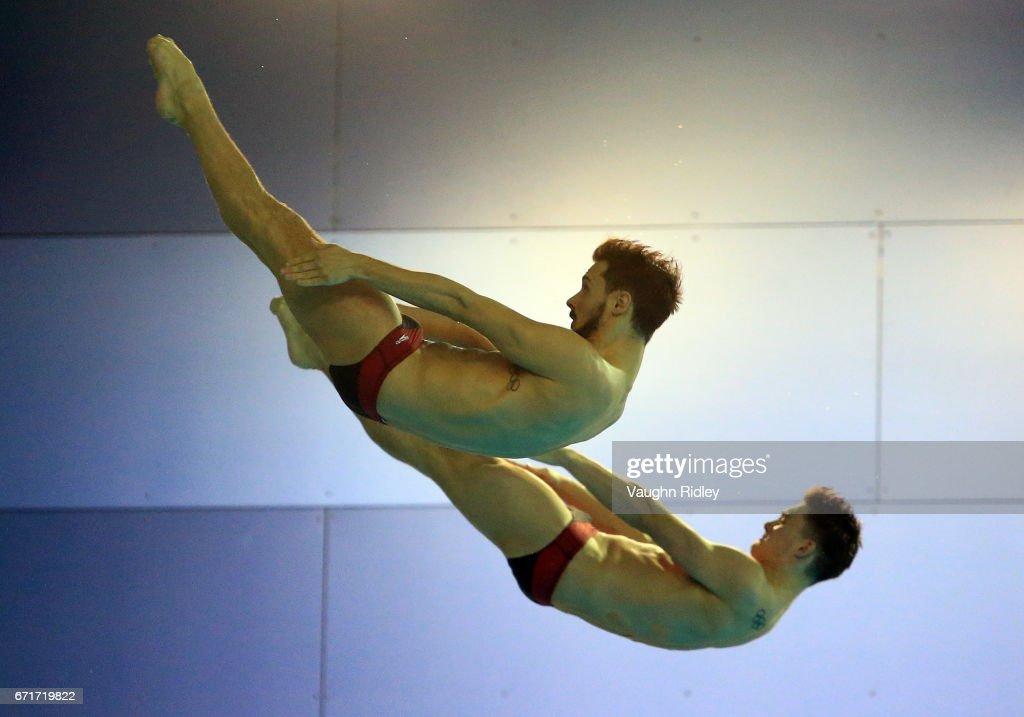 FINA Diving World Series - Windsor