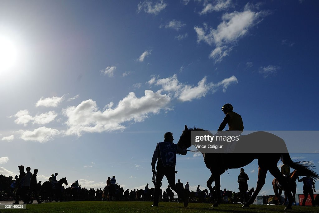 Frank Salanitri takes Royal Island onto track before Race 8, the Wangoom Handicap during Brierly Day at Warrnambool Race Club on May 4, 2016 in Warrnambool, Australia.