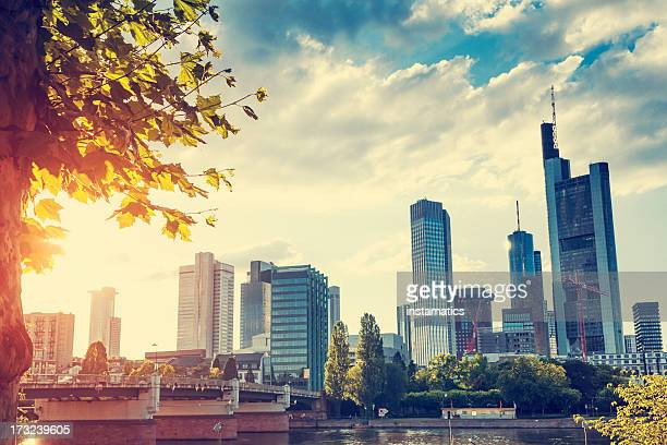 Frankfurt skyline with evening sun