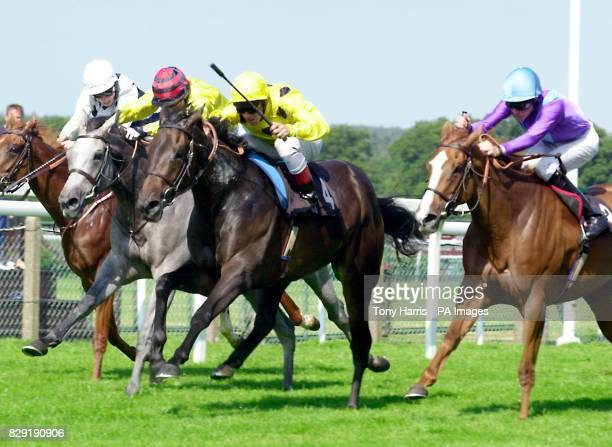 Frankie Dettori on Fraulein wins from Cozy Maria with Johnny Fortune second and Premier Prize ridden by Richard Hughes third at The October Club...