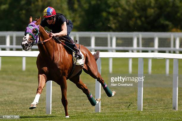 Frankie Dettori riding California Chrome turn right into the straight in a gallop prior to racing at Royal Ascot at Ascot racecourse on June 04 2015...