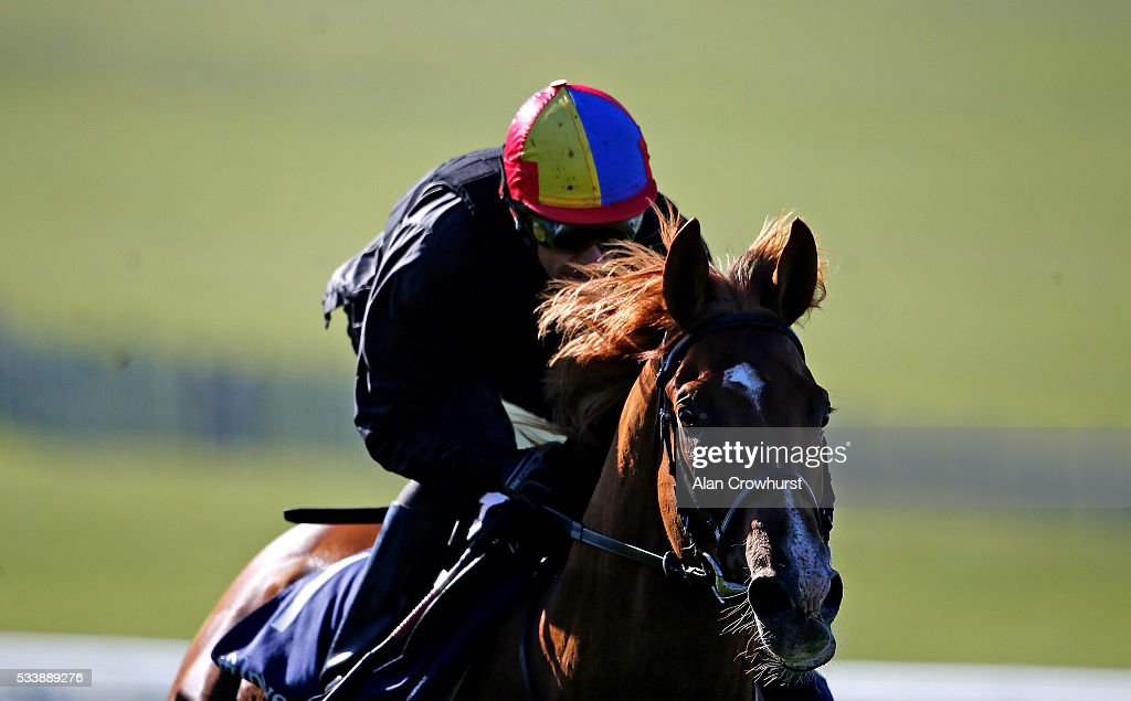 <a gi-track='captionPersonalityLinkClicked' href=/galleries/search?phrase=Frankie+Dettori&family=editorial&specificpeople=167142 ng-click='$event.stopPropagation()'>Frankie Dettori</a> riding Wings Of Desire have a racecourse gallop during the 'Breakfast with the Stars' morning at Epsom Racecourse on May 24, 2016 in Epsom, England.