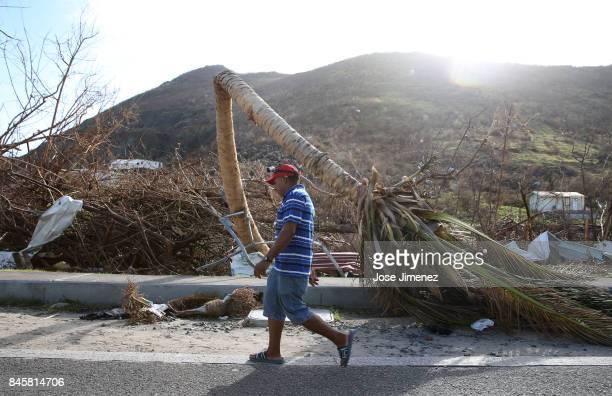 Franklin Sosa from San Pedro Macoris Dominican Republic walks past a split palm tree on September 11 2017 in Philipsburg St Maarten The Caribbean...