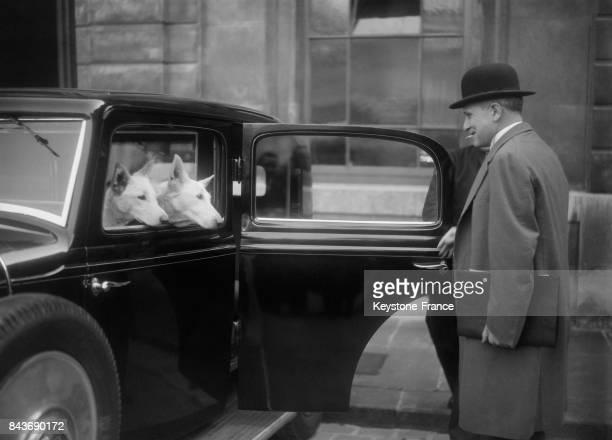 François Piétri montant dans sa voiture gardée par des chiens à Paris France circa 1930