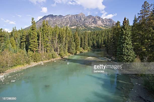 Fraser River, BC, Canada