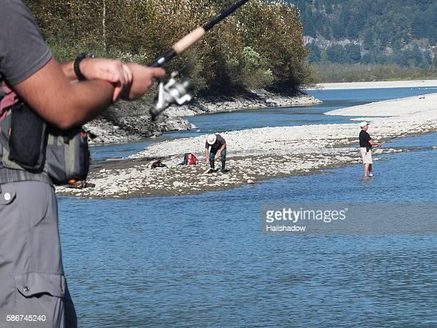 Fraser River Salmon Run