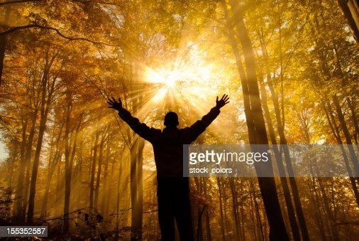 free in autumn season
