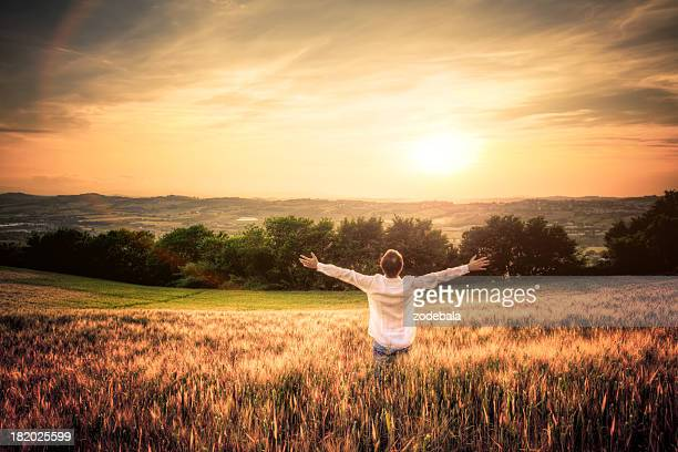 Free Man with Open Arms in Wheat Field at Sunset