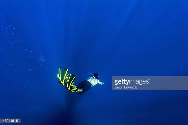 A free-diver descends through sun rays into the deep ocean depths.