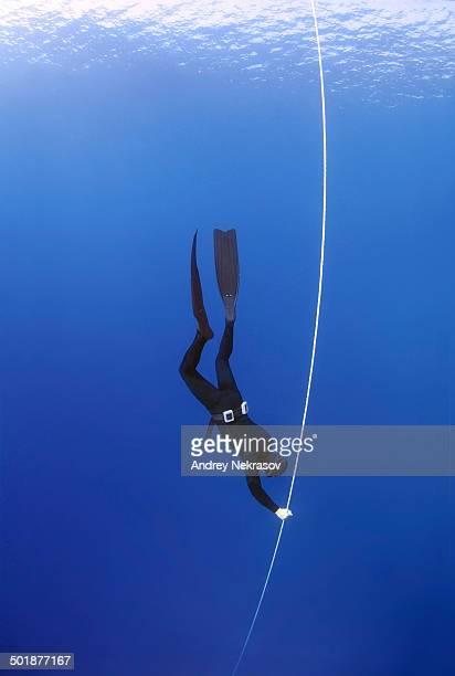 san diego freedivers blue water meet