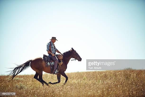 Freiheit über die Felder
