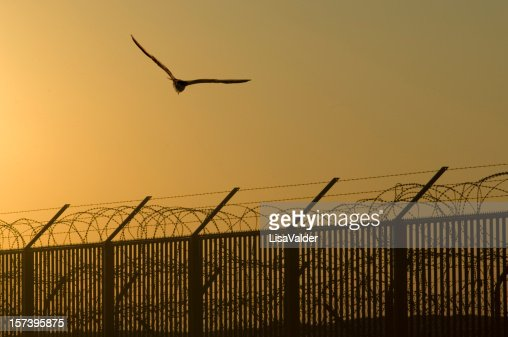 fences against freedom That specific metaphor of the symbolic fences in our lives  but she also provides redemptive reconciliation against our  be lovers of freedom and.
