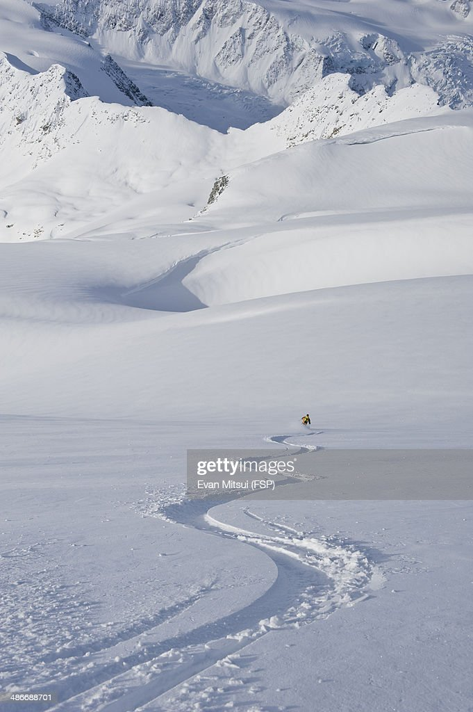 Freedom skier