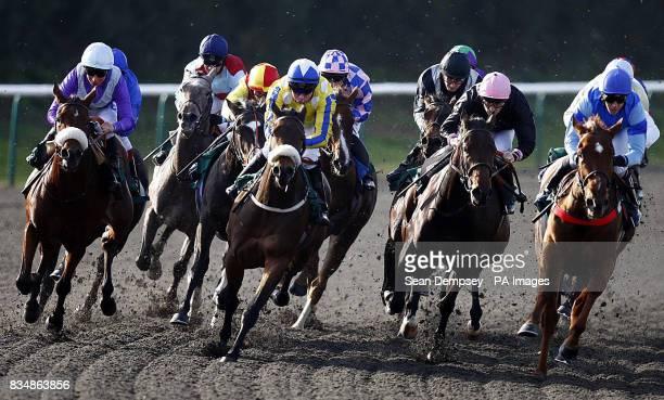 Freepressionist and jockey Jim Crowley wins the EBF Bet at ladbrokescom maidan fillies stakes at Lingfield Racecourse