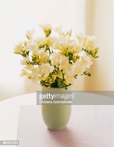 Freesia flowers in vase : Stock Photo