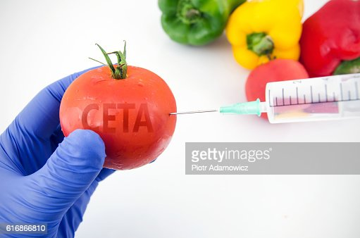CETA free-trade agreement and GMO fruits and vegetables : Stock Photo