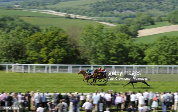 Fremont and Richard Hughes challenge late to catch Rakaan and Jamie Spencer to win The Nick Brooks EBF Maiden Stakes at Goodwood Racecourse