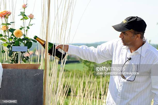 French actor and humorist Pascal Legitimus pours champagne in a flower pot as he baptizes a new kind of rose which was given his name on May 29 2012...