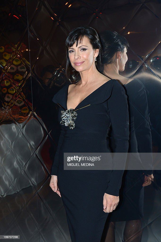 French actress Mathilda May poses during the 18th Lumieres awards ceremony, on January 18, 2013 at the Gaite Lyrique in Paris. International media journalists based in Paris from around 50 countries vote each year to award their own prizes to members of the French and francophone film industry. The Academy of the Lumieres paid this year a tribute to foreign actresses in French cinema and organised for the first time, the day before, the 'Francophone meetings' with hosted Tunisia, during which Tunisian director, Ferid Boughedir gave a masterclass.