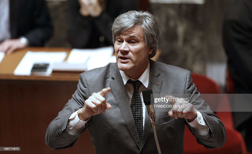 French Agriculture Minister Stephane Le Foll speaks during a session of questions to the government at the National Assembly on February 5, 2013 in Paris. AFP PHOTO FRANCOIS GUILLOT