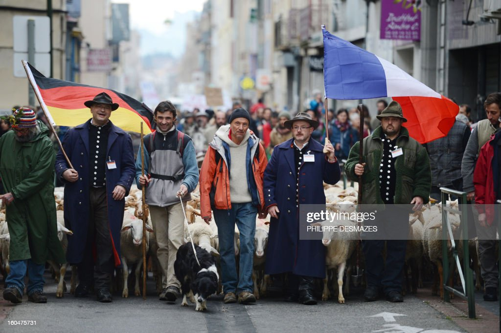 French and German shepherds demonstrate with a flock of ewes, on February 1, 2013, in a street of Valence, southeastern France, to protest against the electronics chip RFID (Radio Frequency Identification) system imposed on their animals. The shepherds are protesting over the mandatory tracking of all of their animals with electronic chips after new European Union legislation passed to impose this on all animals born since 2010. AFP PHOTO / PHILIPPE DESMAZES