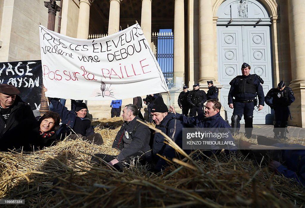 French anti-riot police surround activists of the French farmers union 'Confederation Paysanne', seated on the straw they spread during a protest in front of the French National Assembly, on January 16, 2013 in Paris, against breeding conditions in France. They denounced the increasing prices of basic products for the cattle. The banner reads : 'The breeders want to stand up, not in the straw'.