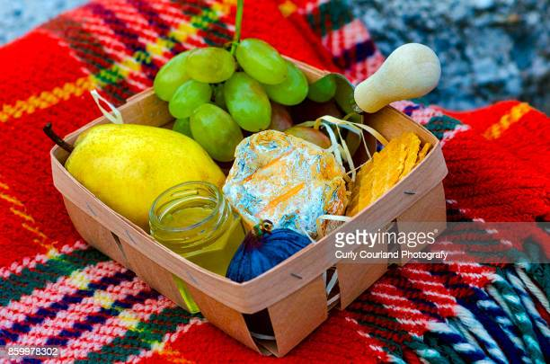 French artisanal goat cheese Crottin de Chavignol made in Ukraine served with pears, fig, honey, grape in the basket on the stone