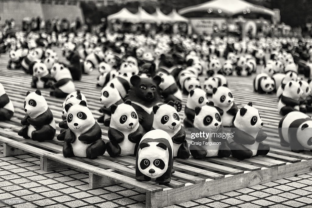 French artist Paulo Grangeon created 1600 papier mache pandas and 200 Formosan Black Bears for the Taipei leg of World Wildlife Fund's Pandas on Tour art installation. Formosan black bears, endemic to Taiwan, were added to the exhibition to reflect their endangered status.