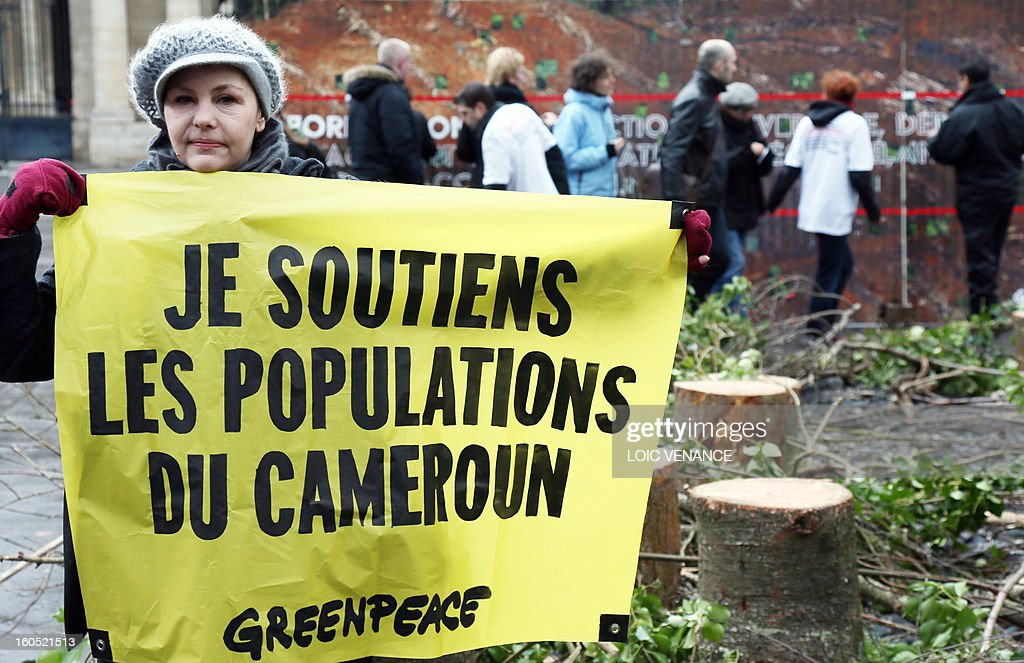 A French branch of environmental NGO Greenpeace activist holds a banner in front of the Conseil d'Etat during a flashmob on February 2, 2013 in Paris. Greenpeace activists protest against the clearance of forests in Cameroon by US company Herakles. Banner reads 'I support the Cameroonians'.