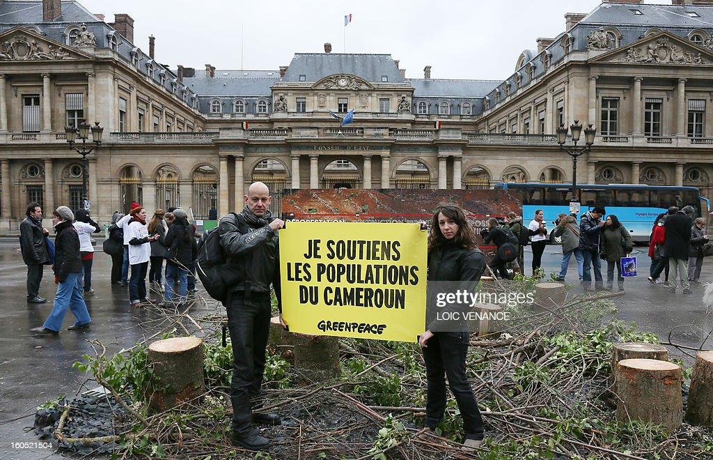 French branch of environmental NGO Greenpeace activists hold a banner in front of the conseil d'Etat during a flashmob on February 2, 2013 in Paris. Greenpeace activists protest against the clearance of forests in Cameroon by US company Herakles. Banner reads 'I support the Cameroonians'.