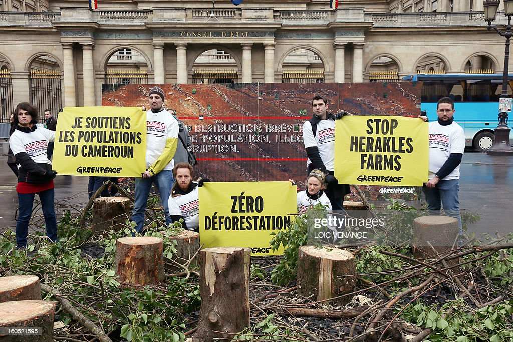 French branch of environmental NGO Greenpeace activists hold banners as they exhibit tree stumps in front of the Conseil d'Etat during a flashmob on February 2, 2013 in Paris. Greenpeace activists protest against the clearance of forests in Cameroon by US company Herakles. Banner (L) reads 'I support the Cameroonians'.