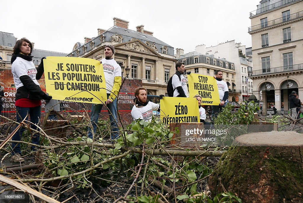 French branch of environmental NGO Greenpeace activists hold banners as they exhibit tree stumps in front of the conseil d'Etat during a flashmob on February 2, 2013 in Paris. Greenpeace activists protest against the clearance of forests in Cameroon by US company Herakles. Banner (L) reads 'I support the Cameroonians'. AFP PHOTO LOIC VENANCE