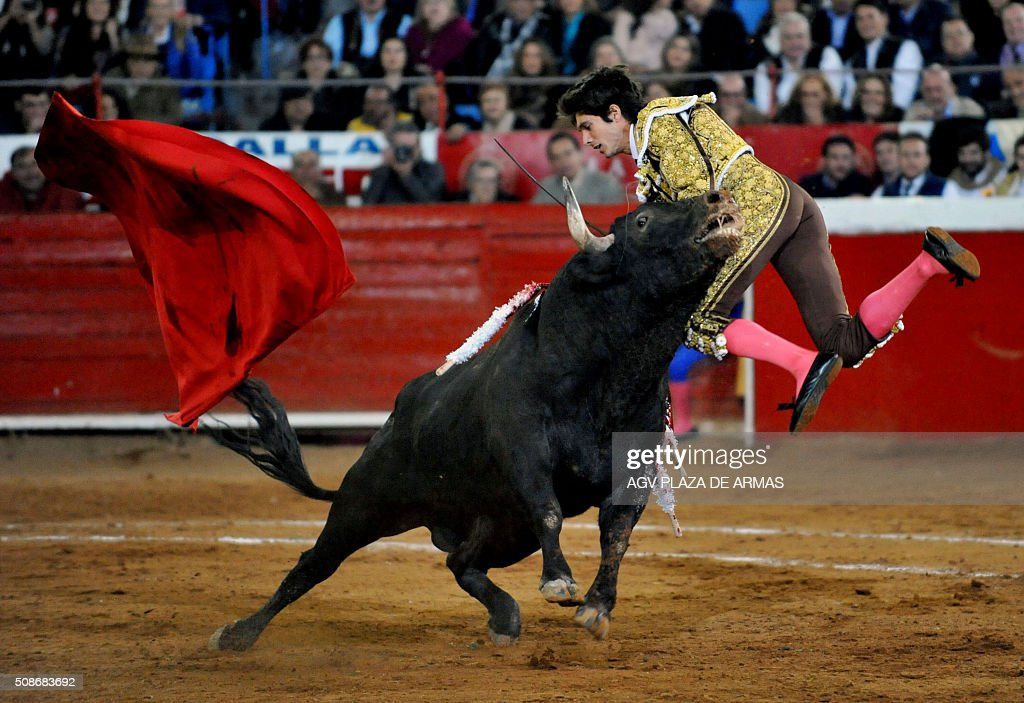 French bullfighter Sebastian Castella receives a goring during the Anniversary of the Monumental Plaza de Toros Mexico, in Mexico City on February 5, 2016.