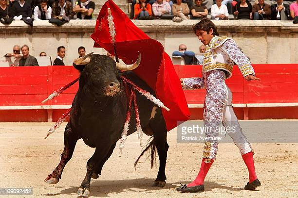 French bullfighter Sebastien Castella in action during the 61st annual Pentecost Feria de Nimes at Nimes Arena on May 19 2013 in Nimes France The...