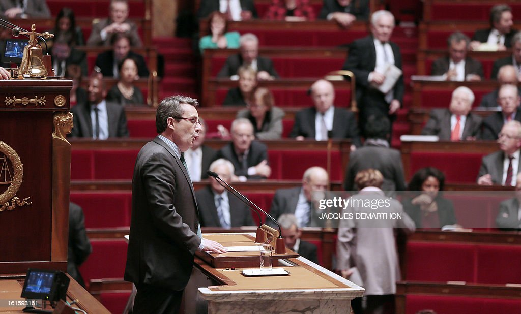 French centrist opposition party (UDI) MP, Jean-Christophe Fromentin (L) delivers a speech explaining his parliamentary group's vote on February 12, 2013 at the French National Assembly in Paris, after the assembly voted by a clear majority to adopt legislation allowing homosexual couples to marry and adopt children. The formal vote came 10 days after lawmakers voted overwhelmingly in favour of its key article which redefines marriage as a contract between two people rather than between a man and a woman. The law will now go for approval by the upper house of parliament.