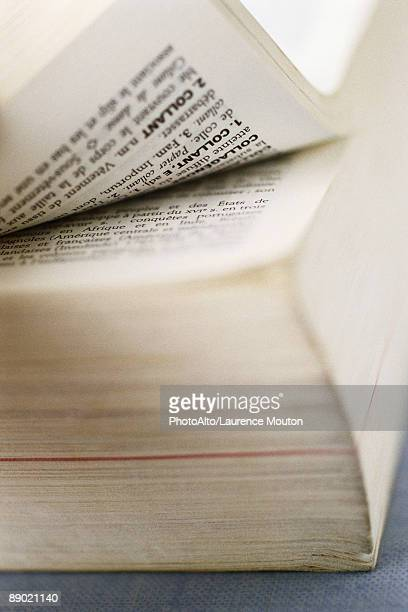 French dictionary, extreme close-up