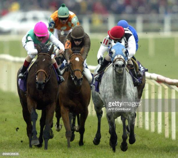 French entry Starine heads for the finish line as jockey John Velazques takes a look over his shoulder in the Breeders' Cup Filly Mare Turf race 26...