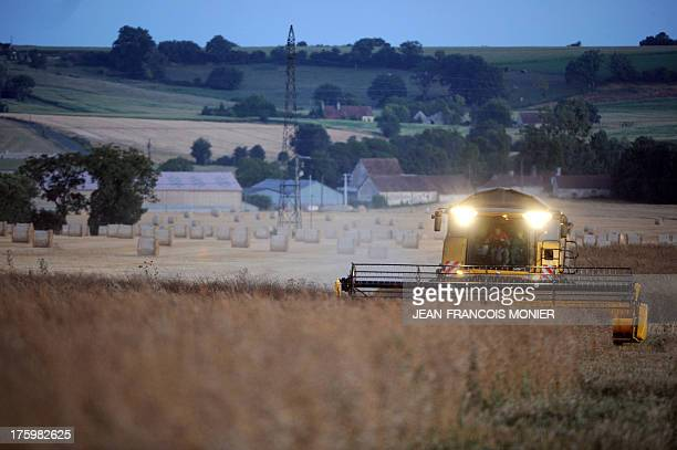 A French farmer harvests rapeseed with a combine harvester in Coulombiers western France on August 10 2013 AFP PHOTO / JEANFRANCOIS MONIER