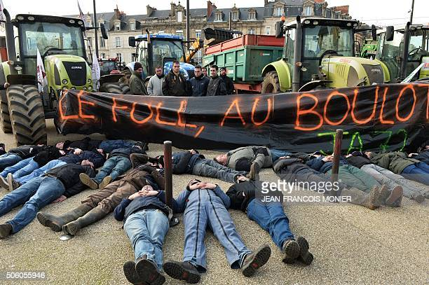 French farmers lying on the ground next to a banner reading 'Le Foll at work' demonstrate to protest against falling prices of dairy and meat...