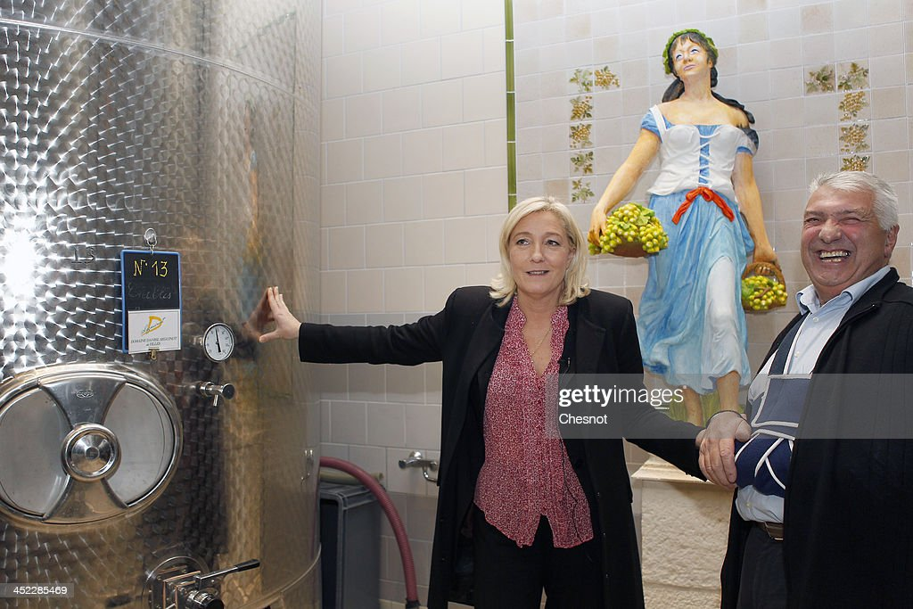 French far-right National Front's (FN) Leader <a gi-track='captionPersonalityLinkClicked' href=/galleries/search?phrase=Marine+Le+Pen&family=editorial&specificpeople=588282 ng-click='$event.stopPropagation()'>Marine Le Pen</a> speaks with a winemaker during her visit in a vineyard on November 27, 2013 in Sens, France.
