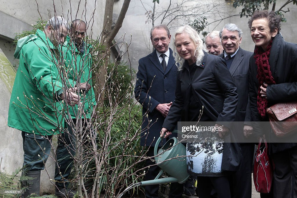 French fashion designer Agnes B (2R) waters a newly planted Magnolia tree with Paris' mayor <a gi-track='captionPersonalityLinkClicked' href=/galleries/search?phrase=Bertrand+Delanoe&family=editorial&specificpeople=206163 ng-click='$event.stopPropagation()'>Bertrand Delanoe</a> (L), Danielle Mitterrand's son Gilbert Mitterrand (3R) and socialist 5th arrondissement local elected Lyne Cohen-Solal (R) at the Danielle Mitterrand square in the 5th arrondissement on January 6, 2014, in Paris France. Agnes B paid tribute to the late wife of former French President Francois Mitterrand, Danielle Mitterrand, who died on November 22, 2011.