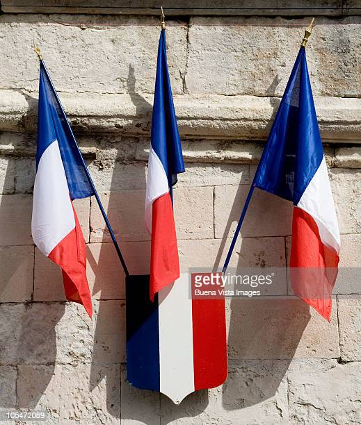 French flags on the Pope's Palace of Avignon