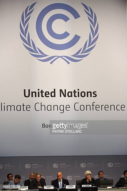 French Foreign Minister Laurent Fabius addresses the United Nations Framework Convention on Climate Change summit in Bonn western Germany on October...