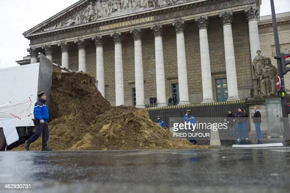 French gendarmes gather around a pile of manure which was dumped from a truck in front of the French National Assembly on January 16 2013 in Paris...