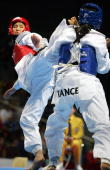 French Gwladys Epangue fights against Korean Hwang KyungSeon during their women's under 67 kg final match at the Taekwondo World Championships in...