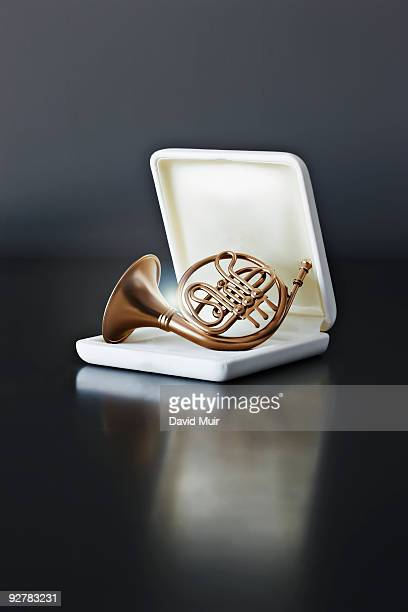 french horn in gift case
