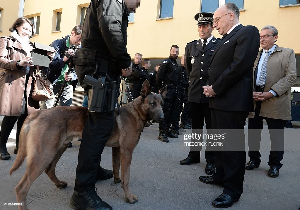 French Interior Minister Bernard Cazeneuve (2nd R) looks at Lewis, a canine of the Recherche Assistance Intervention Dissuasion (RAID) unit, as he greets police officers during a visit to Strasbourg, eastern France, on April 29, 2016. / AFP / FREDERICK