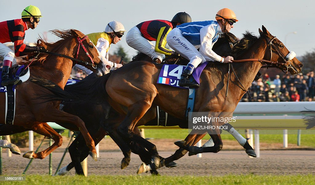 French jockey Olivier Peslier (R, #14) rides on Slemia, the winner of the Prix de l'Arc de Triomphe, during the 2,400-metre (1.5 mile) Japan Cup horse race at the Tokyo Race Course on November 25, 2012. Gentildonna edged past Prix de l'Arc de Triomphe runner-up Orfevre by a nose to become the first three-year-old filly to win the Japan Cup horse racing. AFP PHOTO / KAZUHIRO NOGI