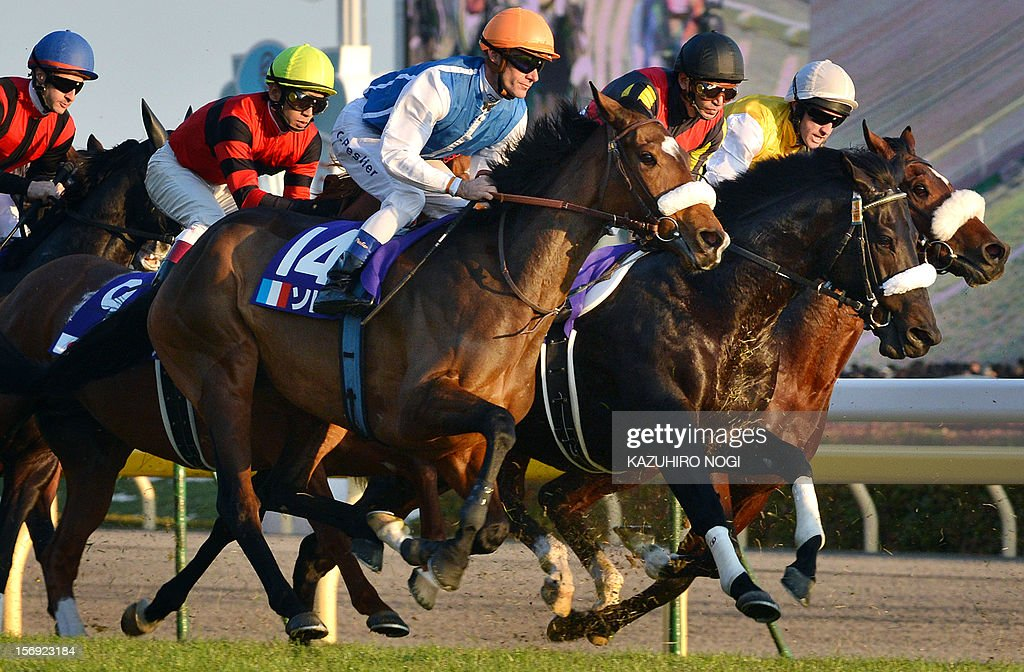 French jockey Olivier Peslier (C, #14) rides on Slemia, the winner of the Prix de l'Arc de Triomphe, during the 2,400-metre (1.5 mile) Japan Cup horse race at the Tokyo Race Course on November 25, 2012. Gentildonna edged past Prix de l'Arc de Triomphe runner-up Orfevre by a nose to become the first three-year-old filly to win the Japan Cup horse racing.